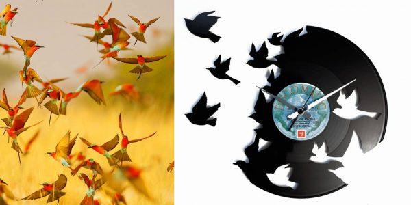 orologio da parete con disco in vinile con ucelli